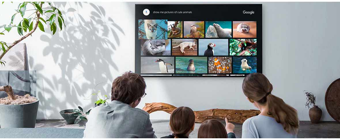 سیستم عامل و ارتباطات تلویزیون سونی 65X9500G سری X9500G