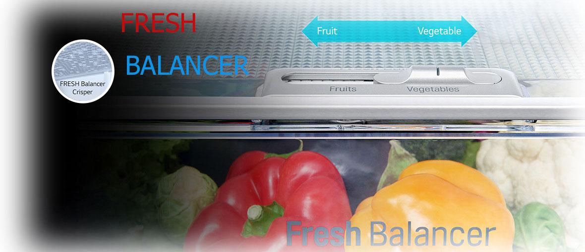 محفظه ی MOIST BALANCE CRISPER و FRESH BALANCER